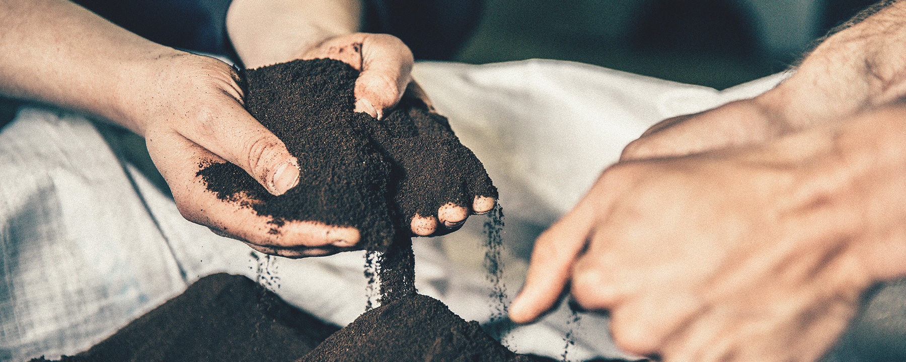dried recycled coffee grounds