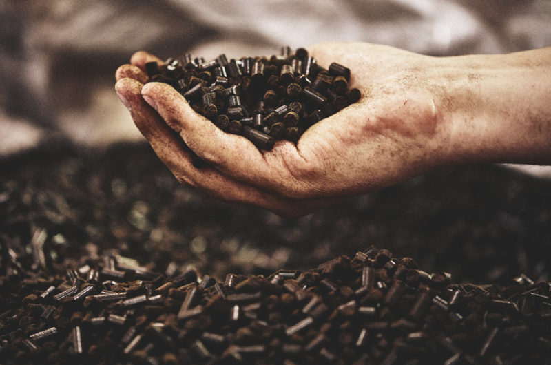 Picture of handful of coffee pellets